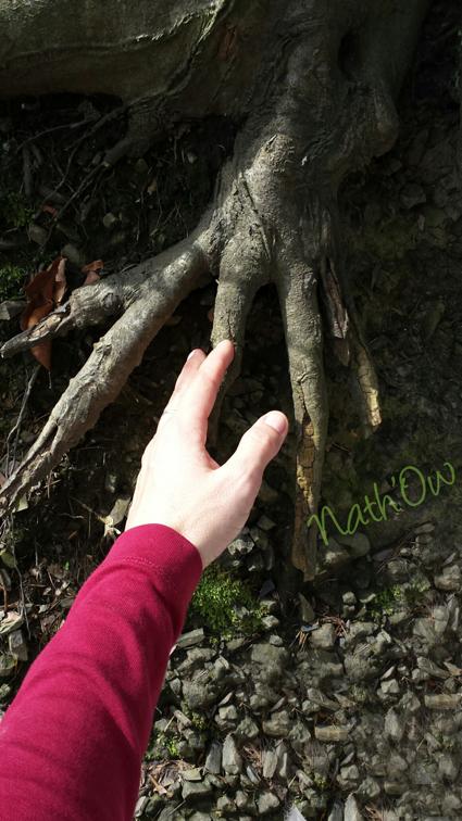 main dans la main - nath owca